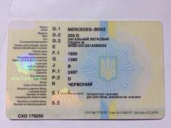The Ukrainian documents