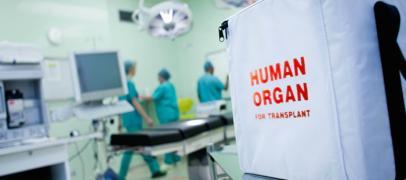 Трансплантация/пересадка органов в Турции. Дорого